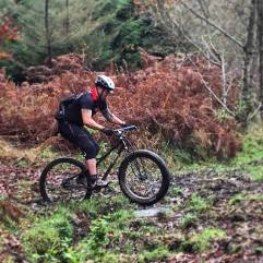 BPR UK: Taz and The Forest