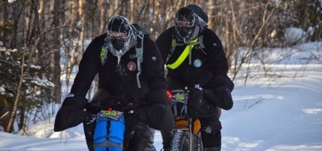 ArrowHead1_upClose